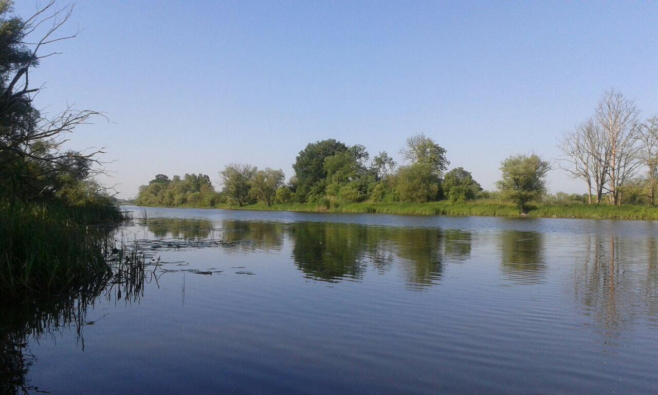 Nitzow Umgebung